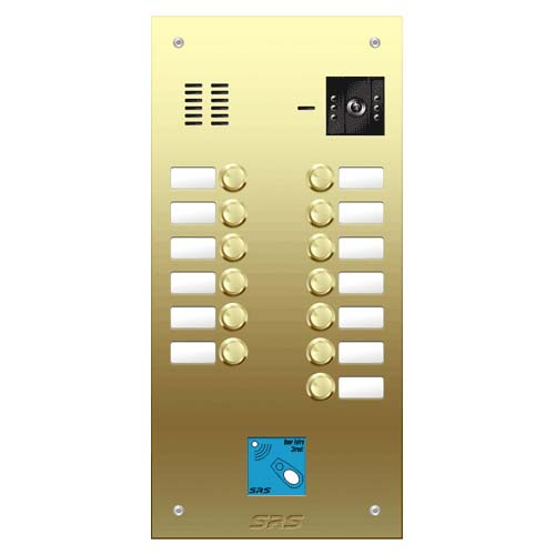 13 button Brass video panel, prox., name win. size D